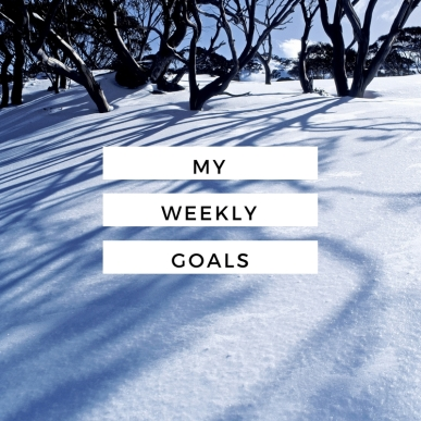 weekly-goals-feb-13